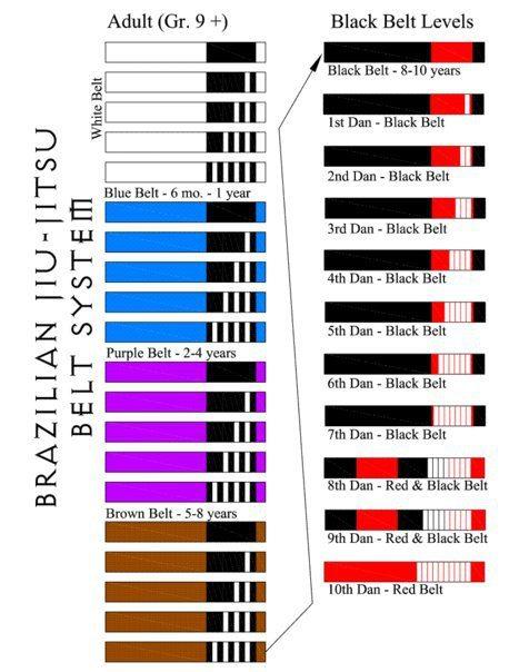 The history of the Gracie Jiu-Jitsu Belt System 1